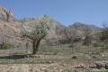 طبيعت زيبا و بهاري روستاي بندر بخش چترود